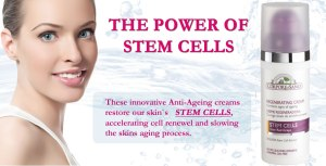 stem_cells_home